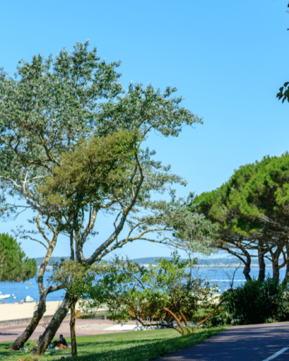 cycling in arcachon