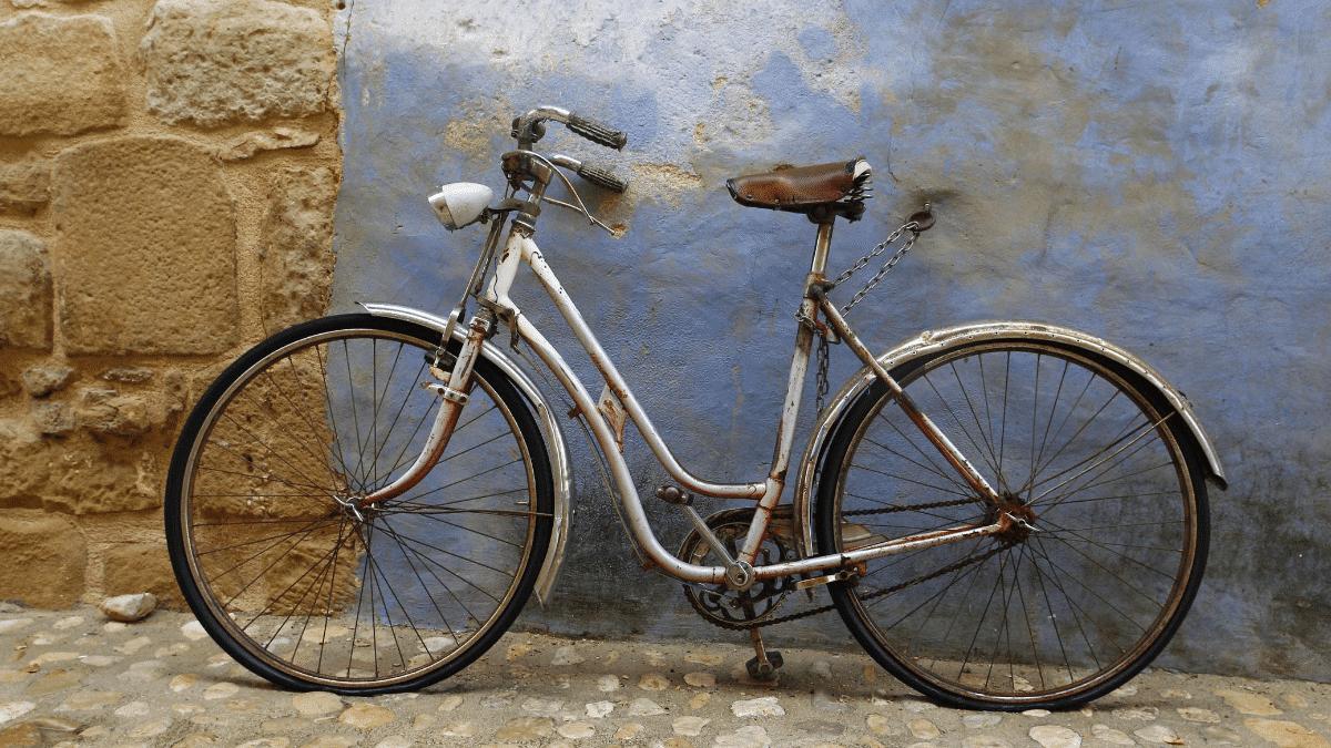 the history of bike DINGOVELOS