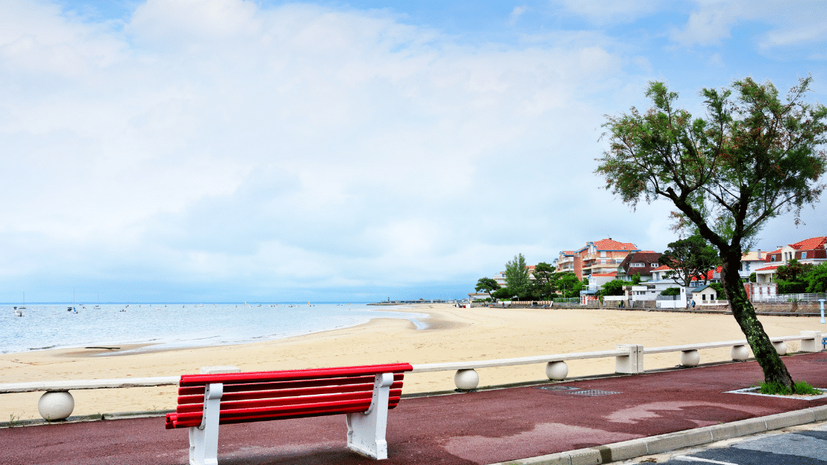 cycle in winter on the Arcachon basin