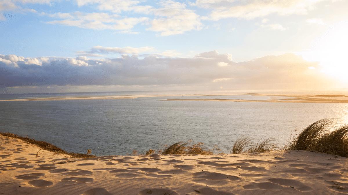 ocean bike basin arcachon dingovelos