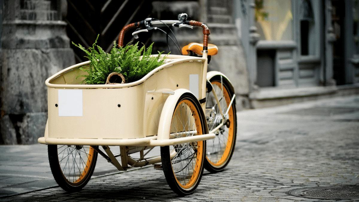 3-wheel model bicycle trike
